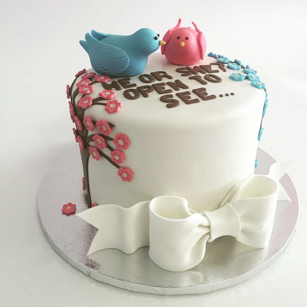 Gender Reveal Cakes Nancy S Cake Designs