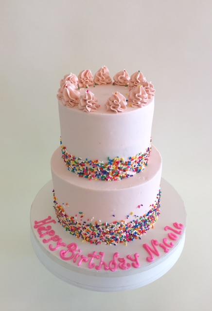 Nancys Cake Designs Girls Birthday Cakes Sprinkles For Days